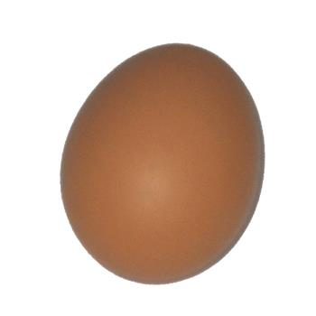 6 Extra Large Class A Eggs