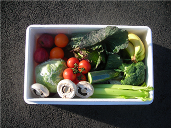 Mixed Produce Box - Our Best Seller!!