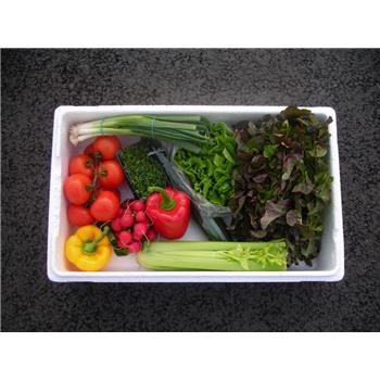 Veggie Box - Salad Selection