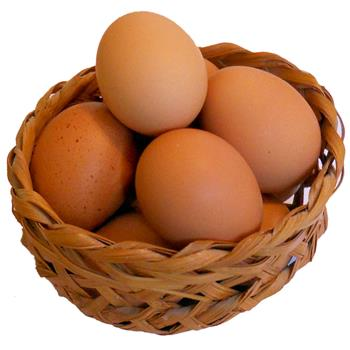 Organic Eggs - Box of 6