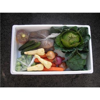 Veggie Box - Great Everyday